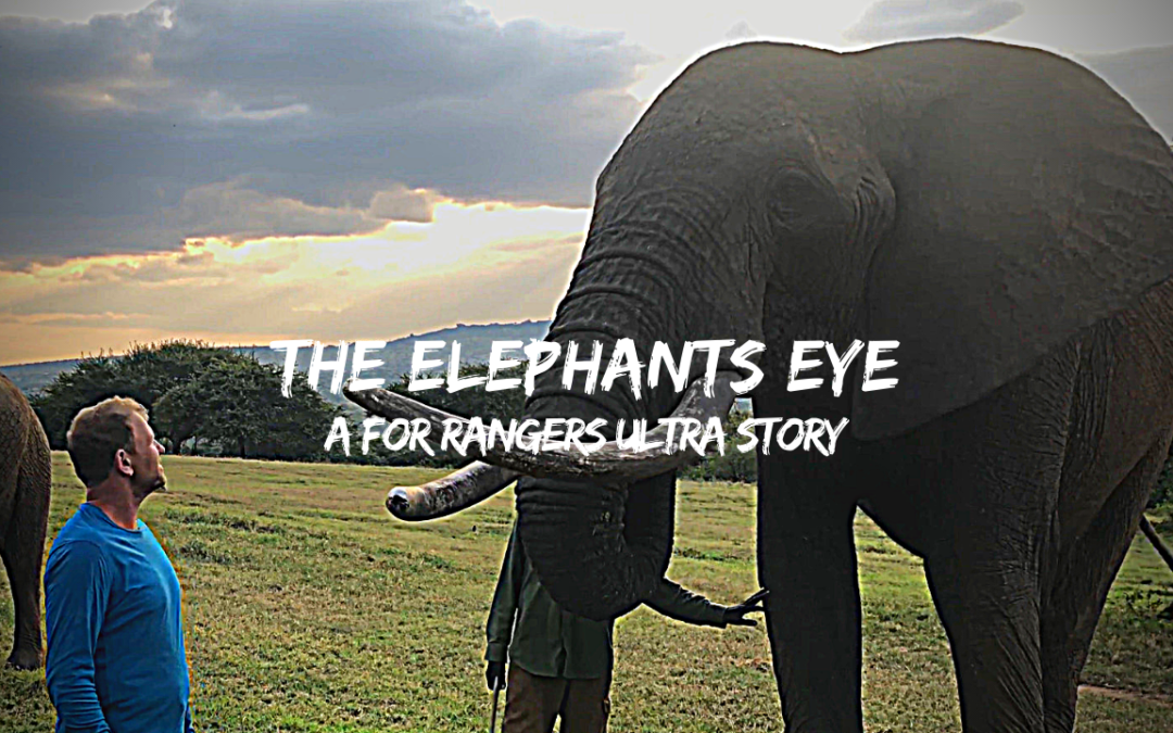TRAILER: The Elephants Eye | A BTU For Rangers Story